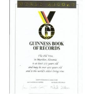 Guinness Book of Records Certificate